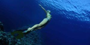 Freediving in Barbados